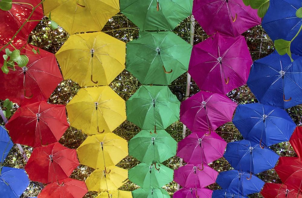 assorted-color umbrellas hanged on metal frame