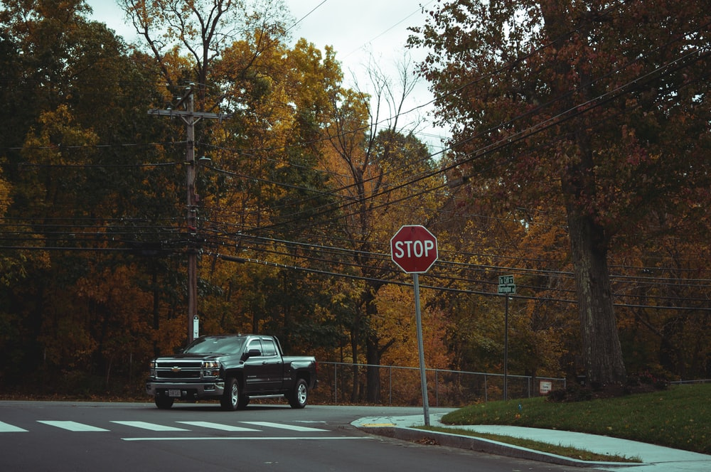 black pickup truck passing on road between trees during daytime