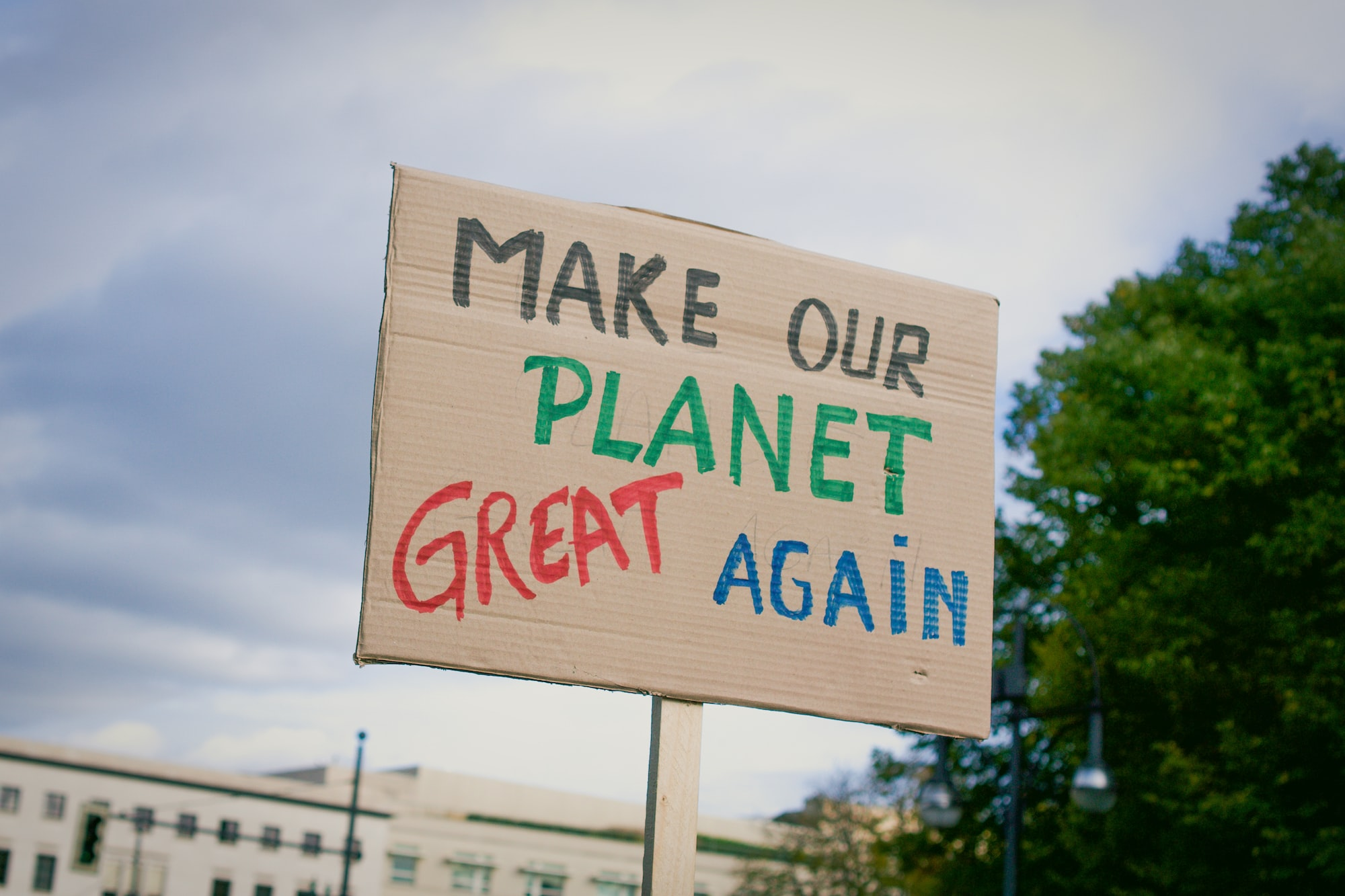 Make our planet great again poster at Fridays for Future