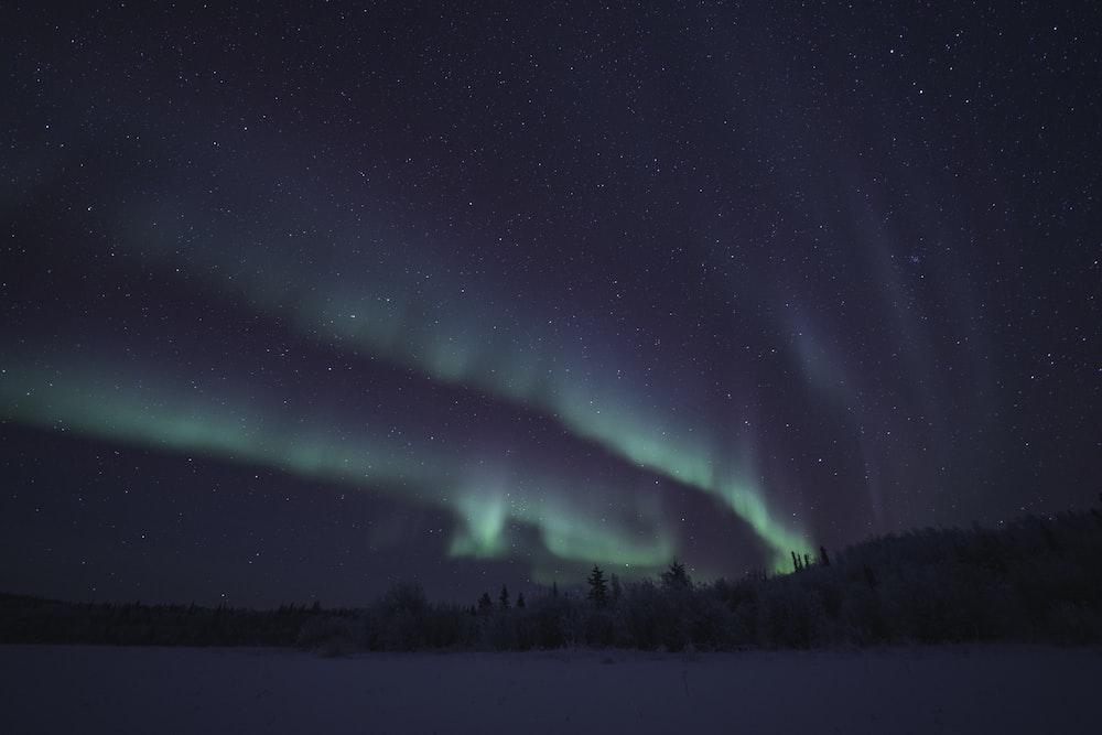 green aurora lights
