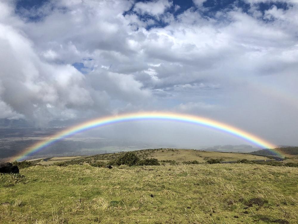 rainbow over green grass field