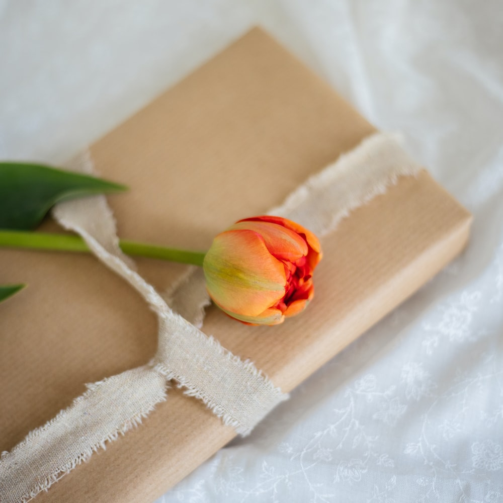 red rose on brown paper