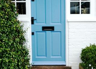 blue wooden door beside green plant