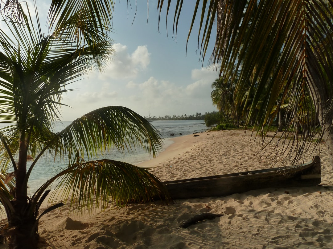 Beach on San Blas Islands, Panama. Sailing Tour from Cartagena to Panama  made by rouichi / switzerland