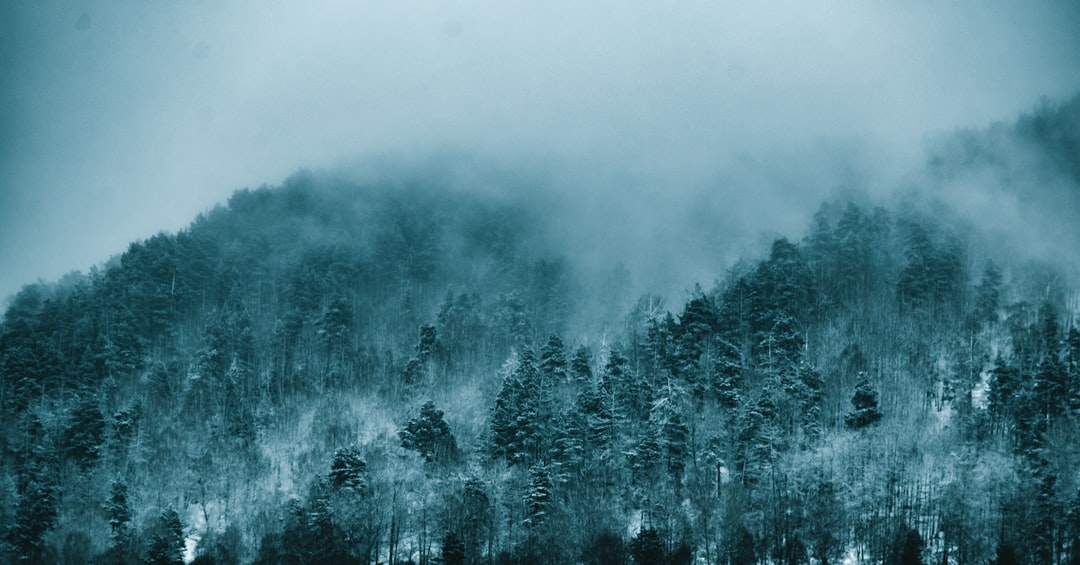 Wintry Morning In the Hills - unsplash