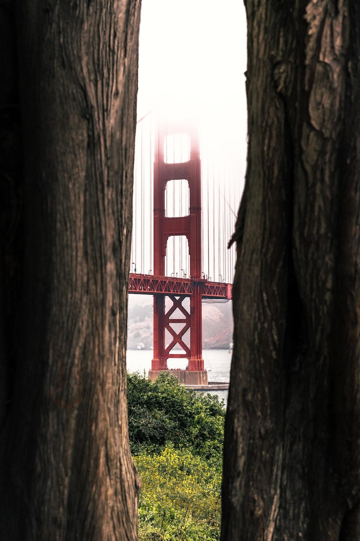 red bridge over the river