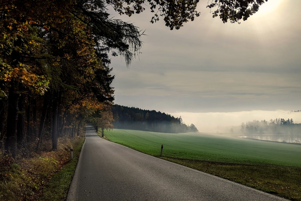 gray concrete road between green grass field and trees under white clouds and blue sky during