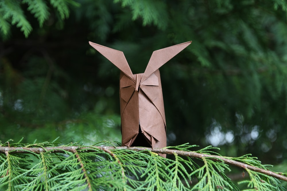 brown paper plane on green tree