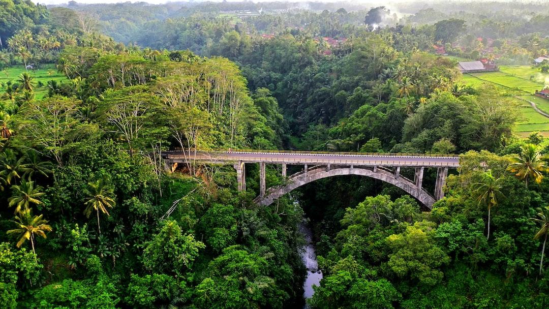 Bridge near Sangeh