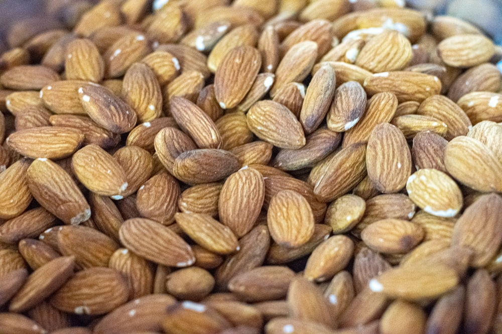 brown almond nuts in close up photography