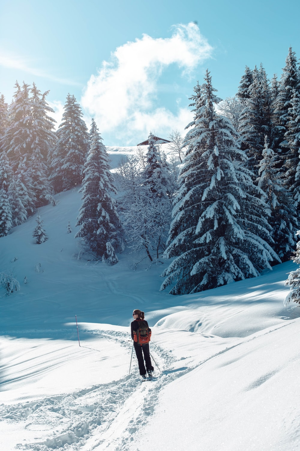 person in red jacket and black pants standing on snow covered ground near snow covered trees
