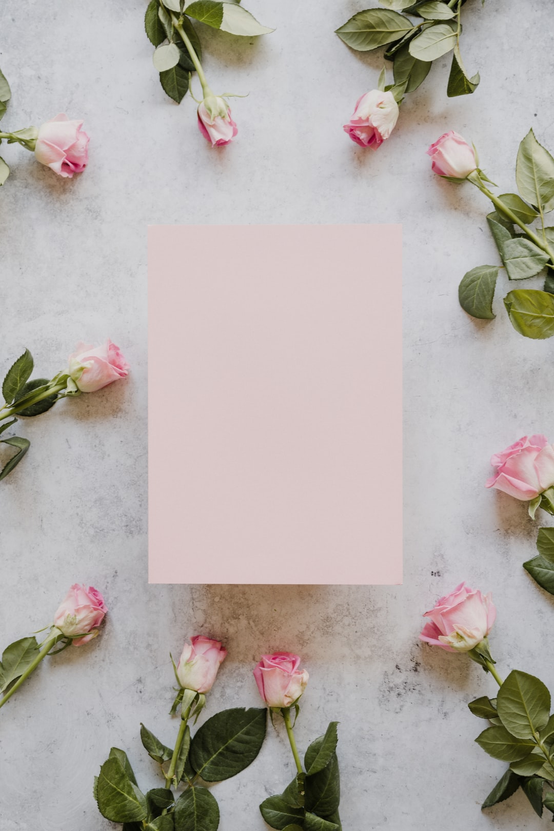 Pink roses with blank pink card
