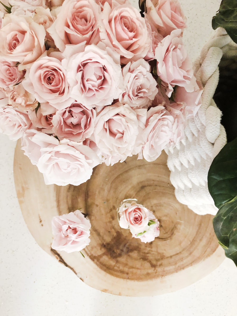 pink roses on brown wooden pot