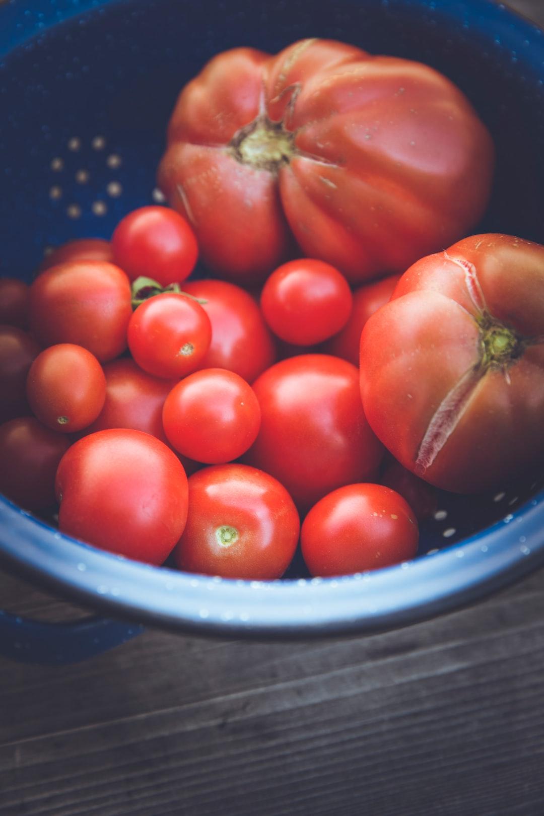 Fresh harvest bio tomatoes urban gardening raised bed for self support