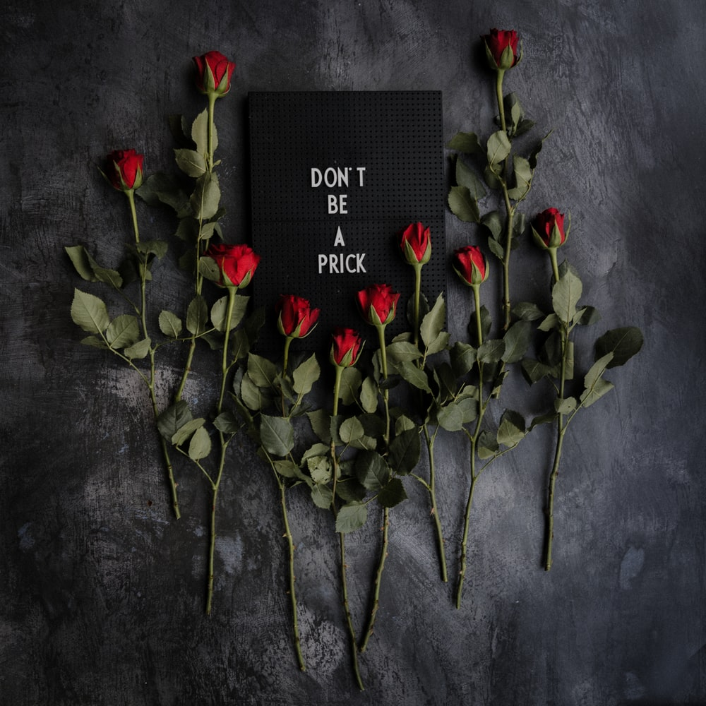 red roses on black textile