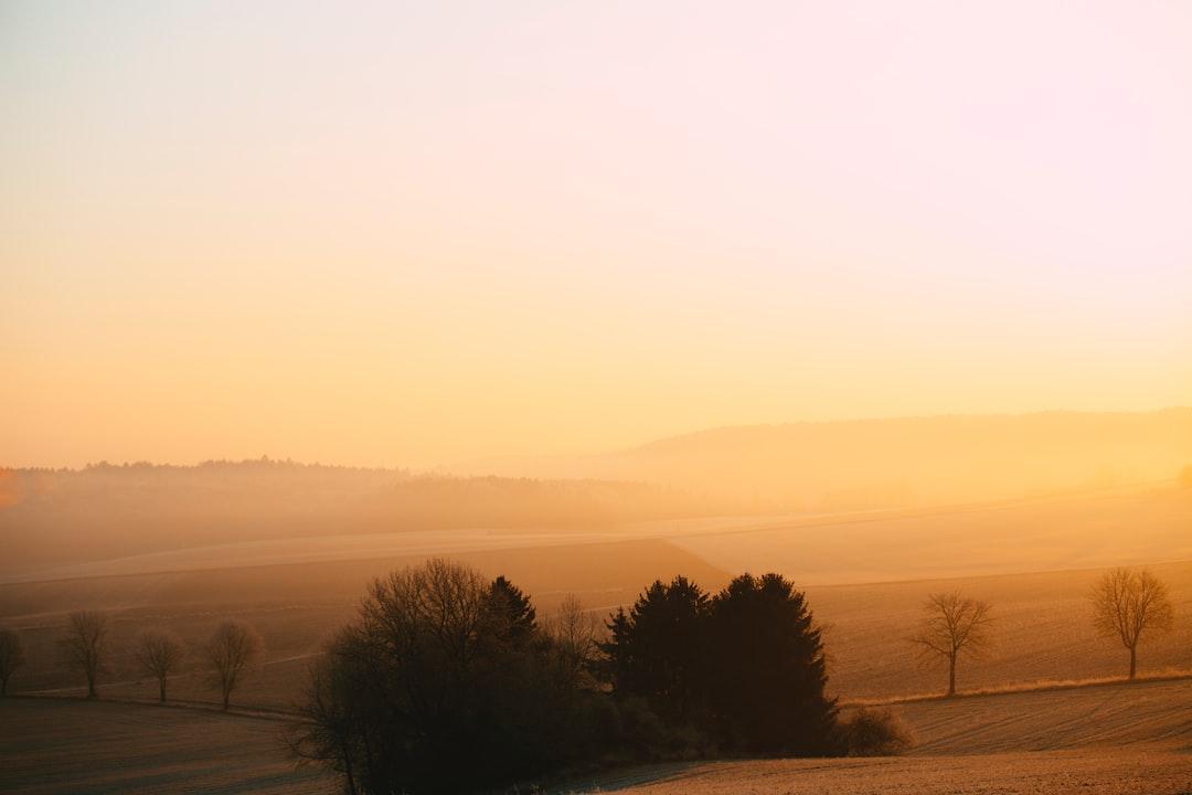Sunrise Foggy Morning - unsplash