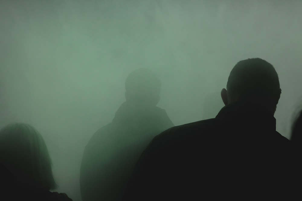 silhouette of 2 person standing on foggy forest