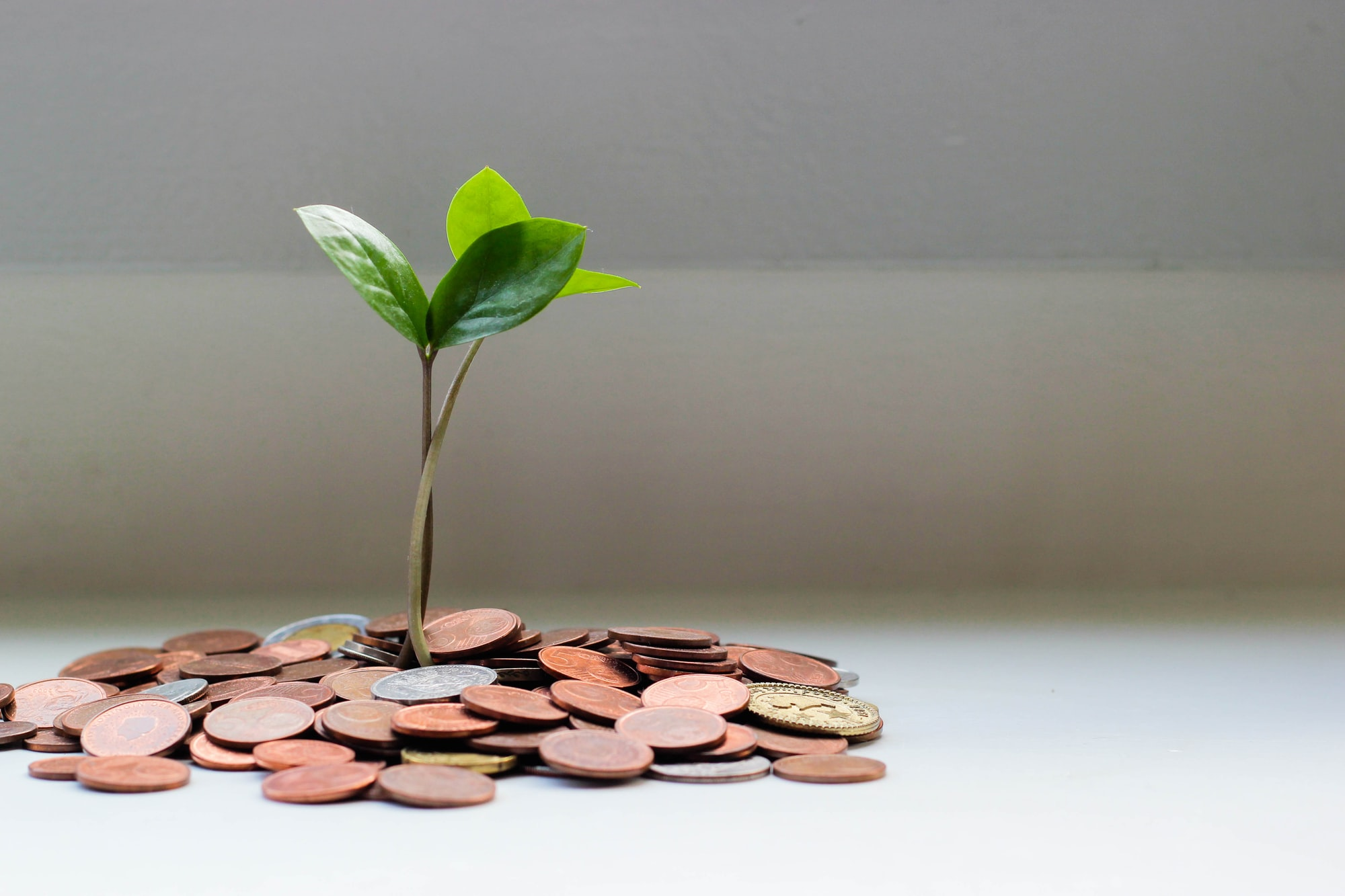 If You Want To Save Money,  Drop Budgeting and Start Measuring Your Life Energy