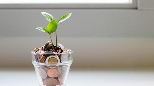 The Financial Behaviors of Millennials