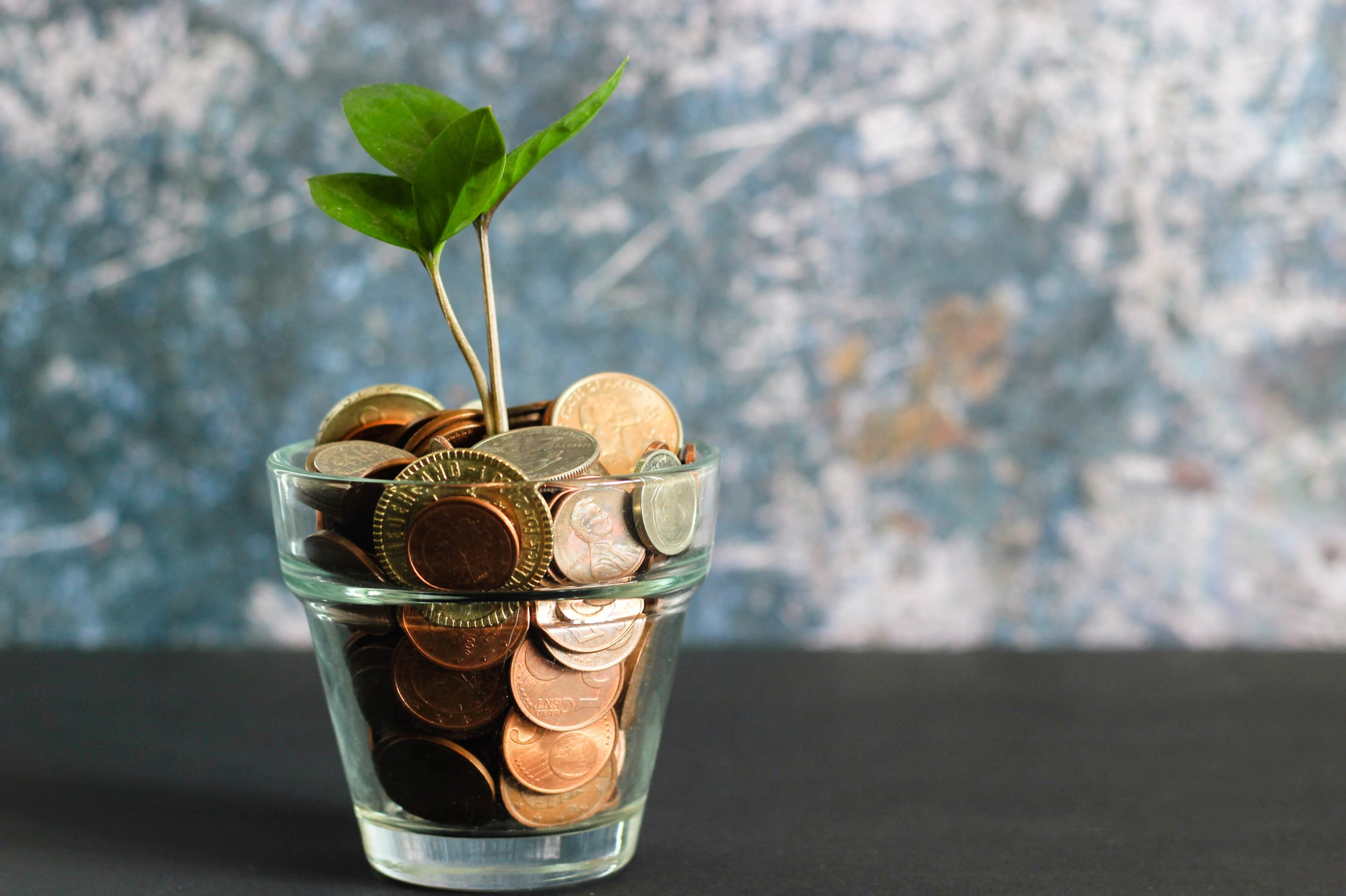 A plant growing from a jar of coins