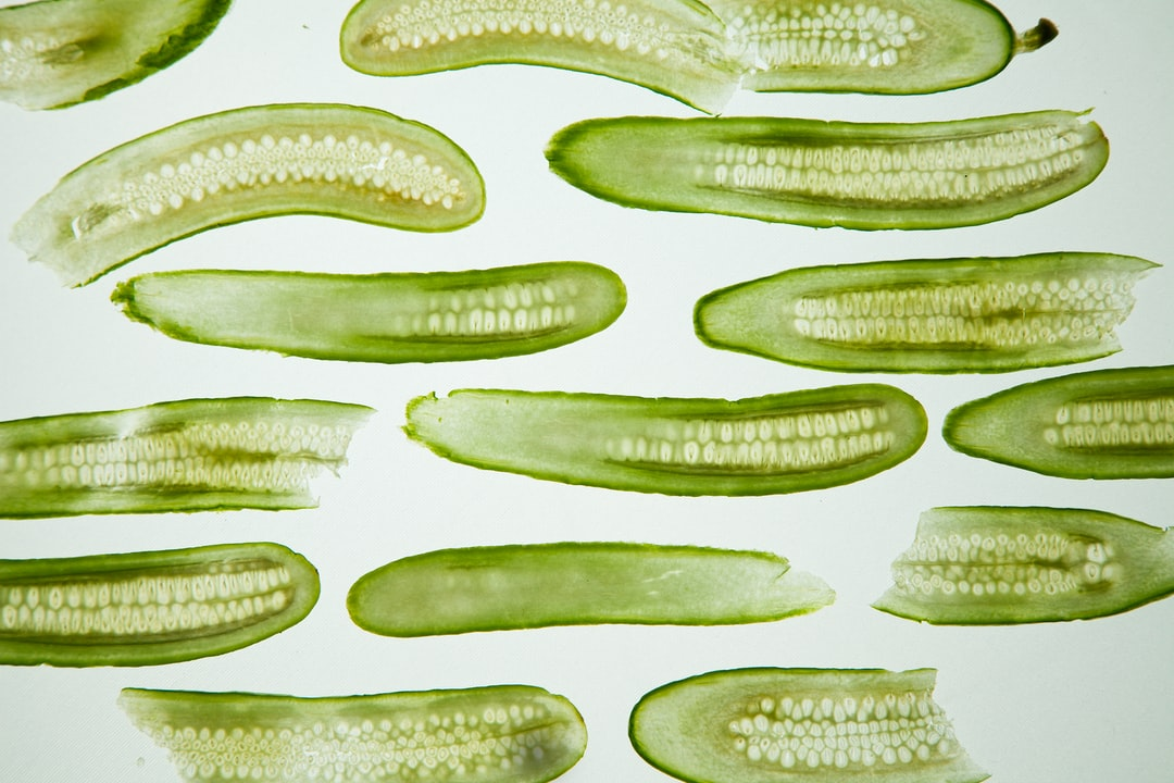 Cucumber - unsplash