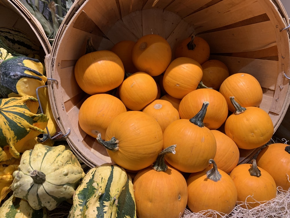 yellow and green pumpkins in brown wooden bucket
