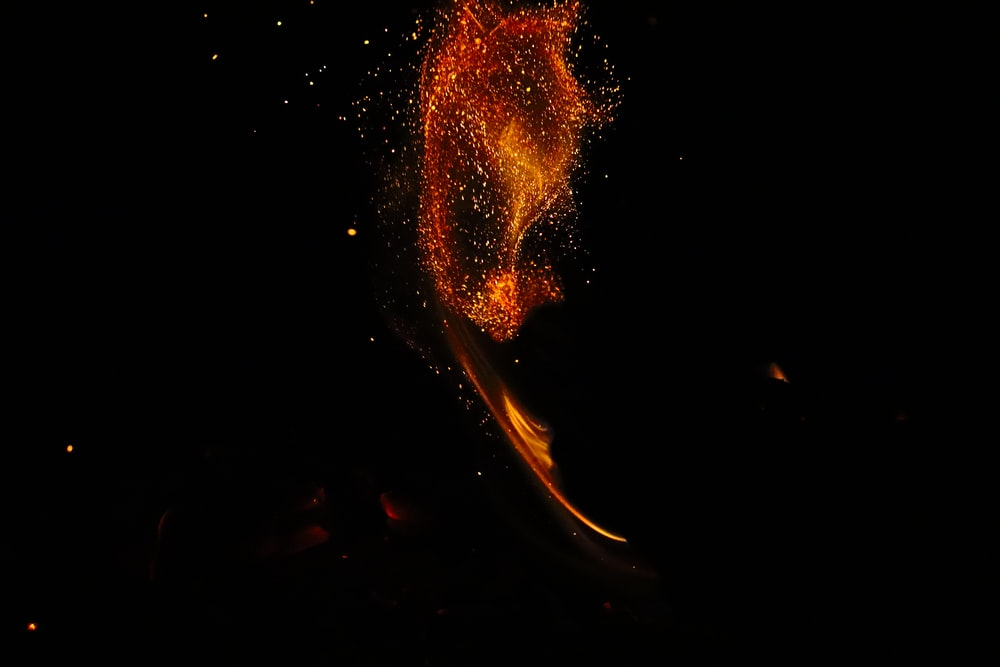 orange and yellow fire during night time