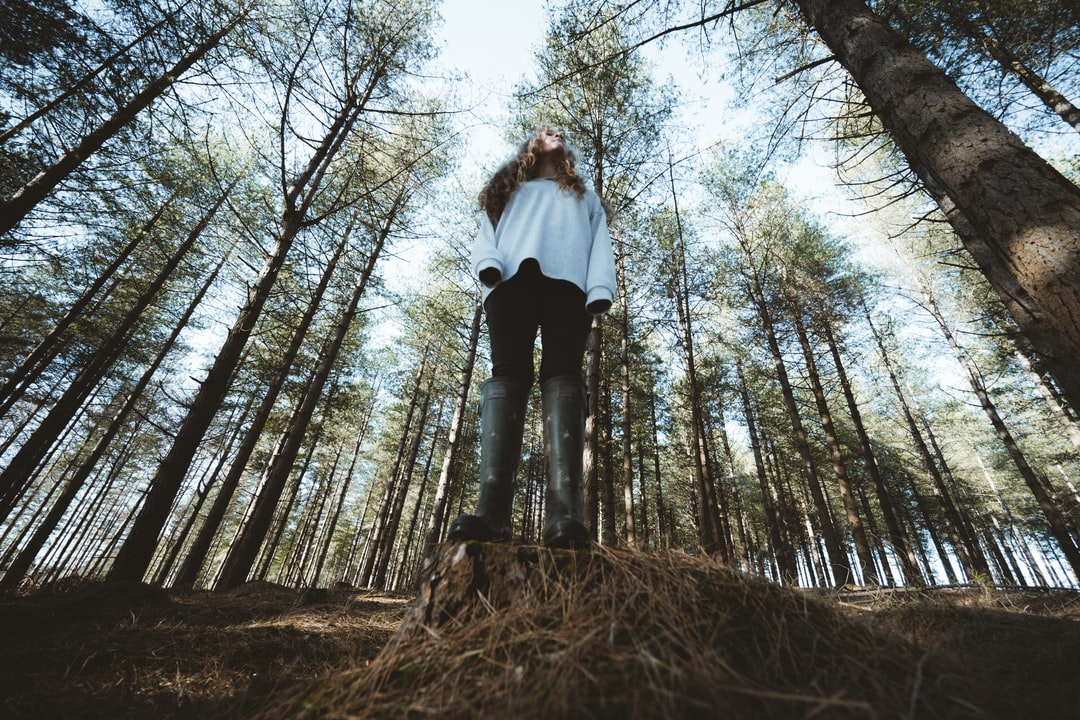 Wide angle forest scene with woman stood on tree stump