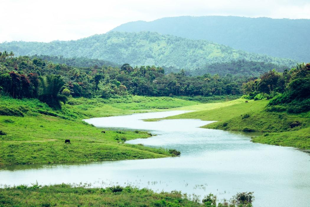 A click in Kerala