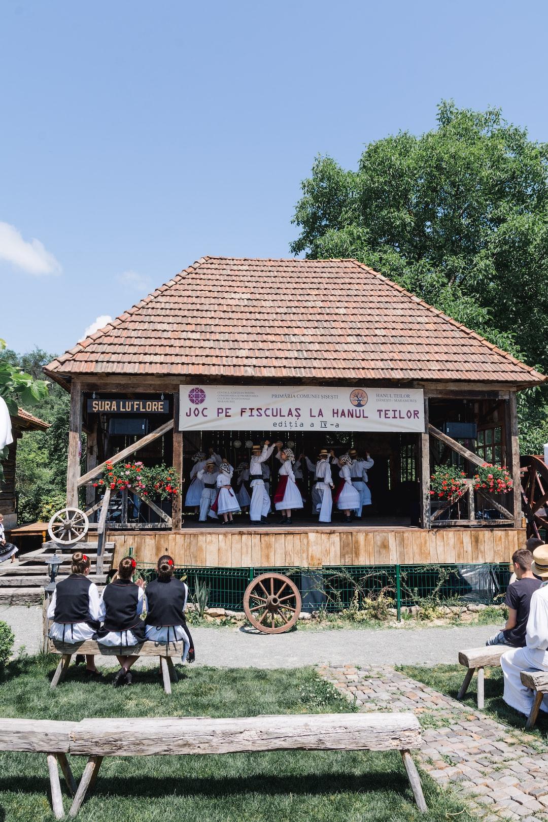 Traditional festival | Danesti, Romania