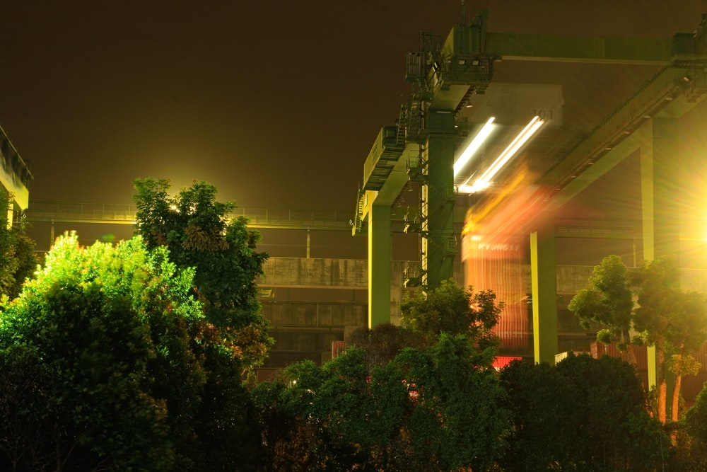 green trees near building during night time