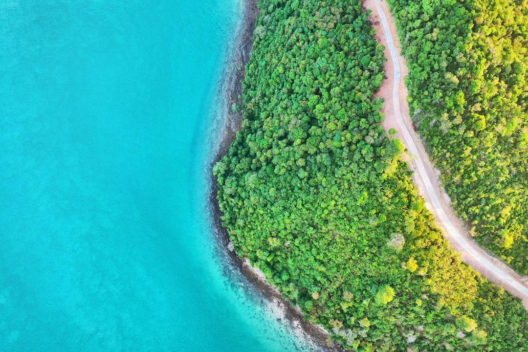 Jungle, Path, Sea - Thailand - unsplash