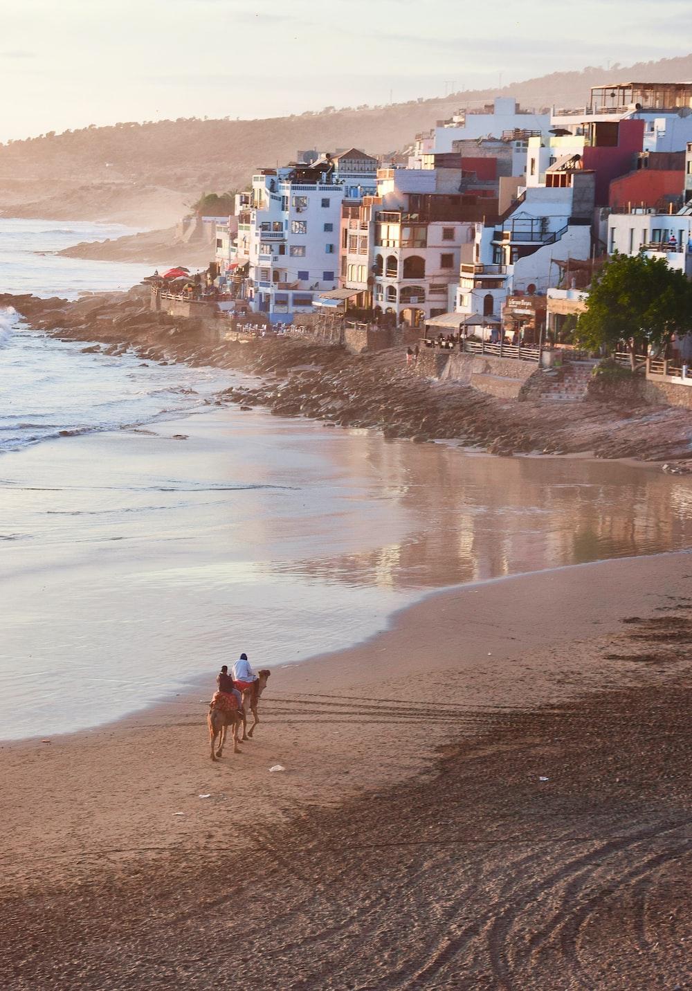 person in black shirt walking on seashore during daytime