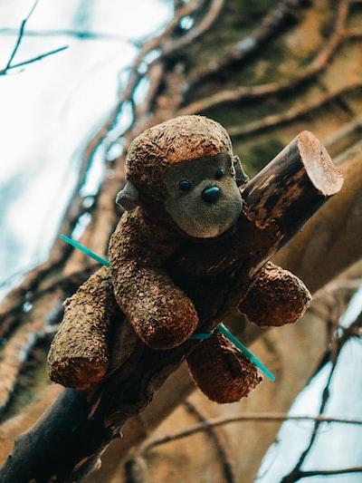 brown monkey plush toy on brown tree branch