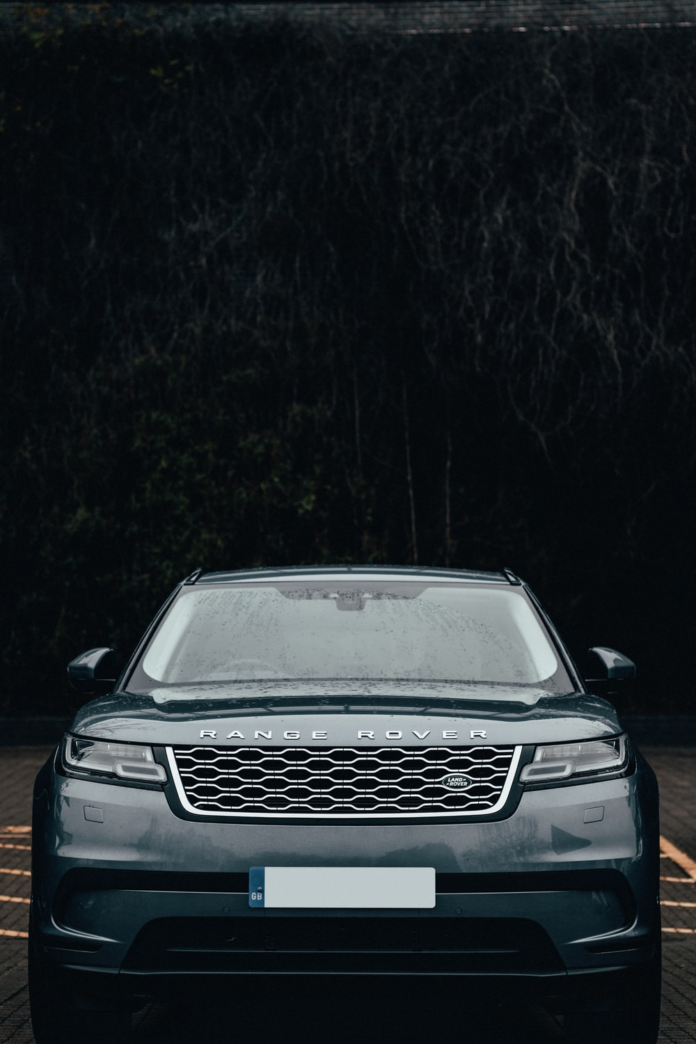black car in the forest