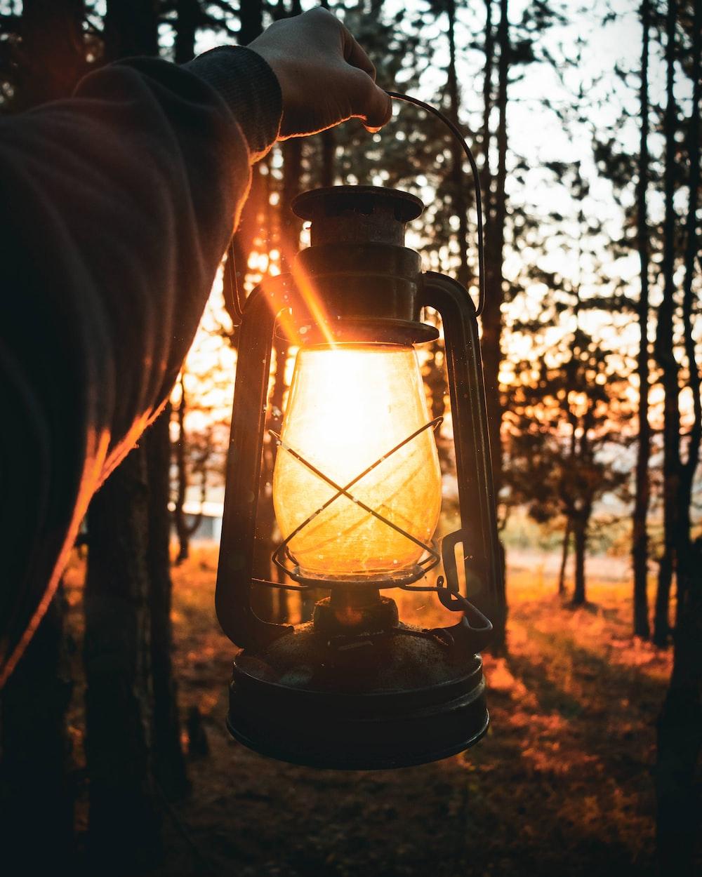 person holding lantern lamp near trees during daytime
