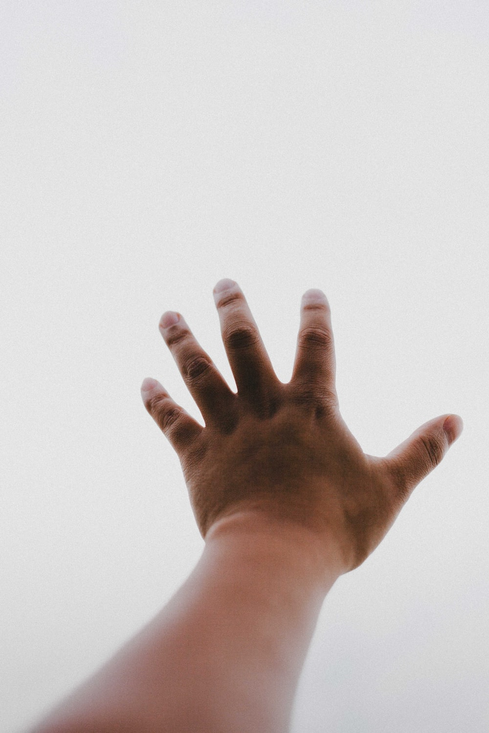 persons left hand on white background