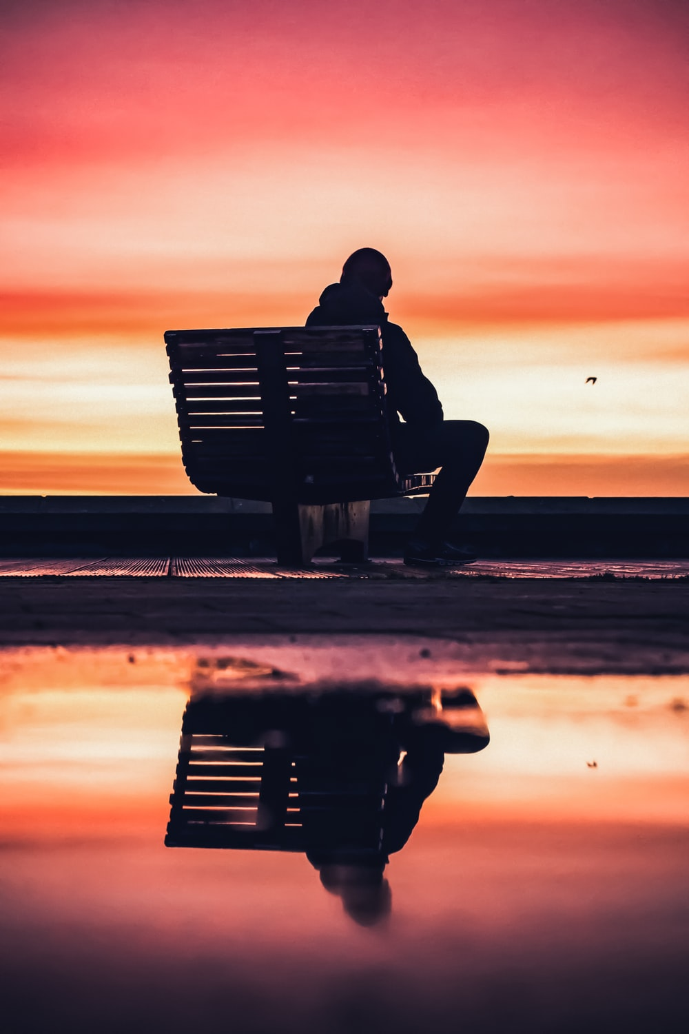silhouette of man sitting on bench near beach during sunset