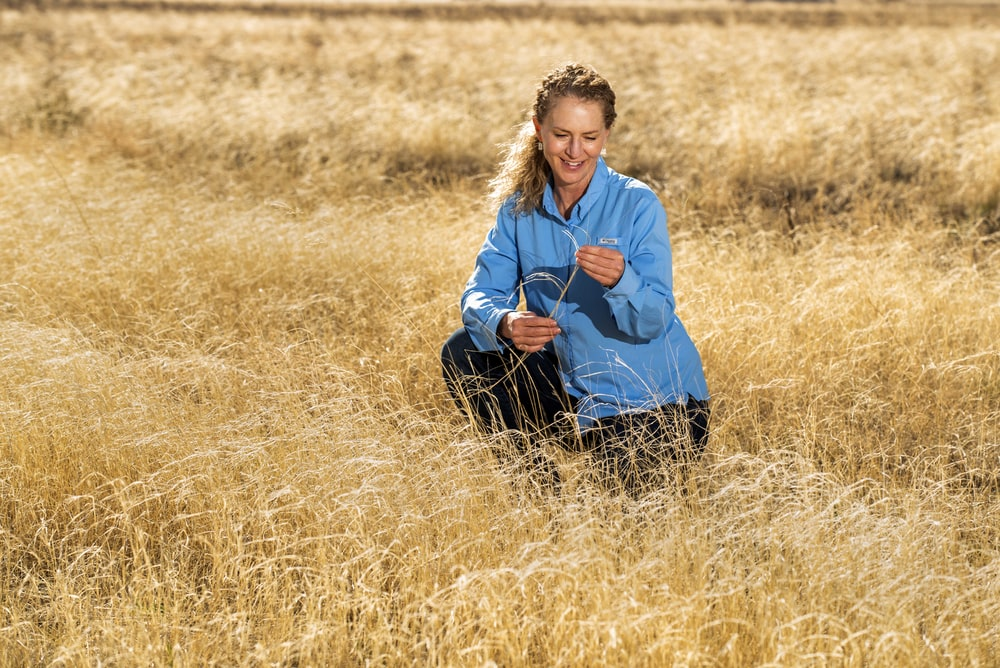 woman in blue jacket and black pants sitting on brown grass field during daytime