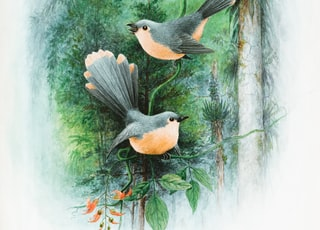 black and brown bird on tree branch painting