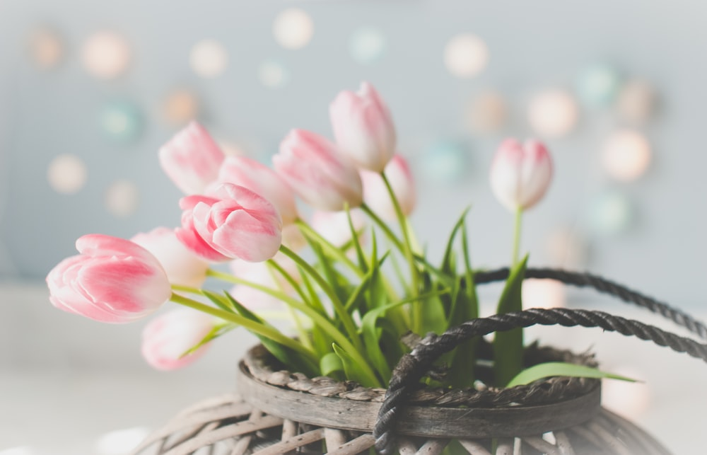 pink tulips in brown woven basket