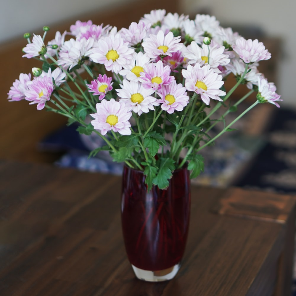 white and purple flowers in red glass vase