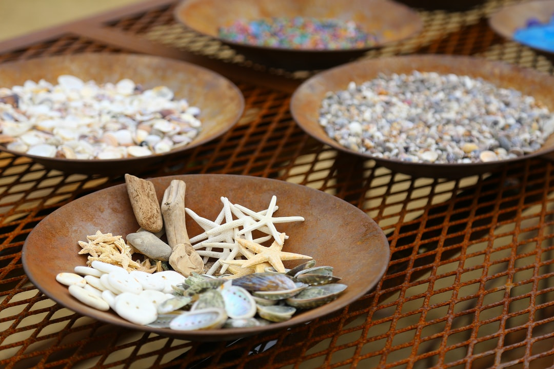 Seashells in plates.  The photo is free to use but I'd appreciate it if you add a backlink to https://tarta.ai/.