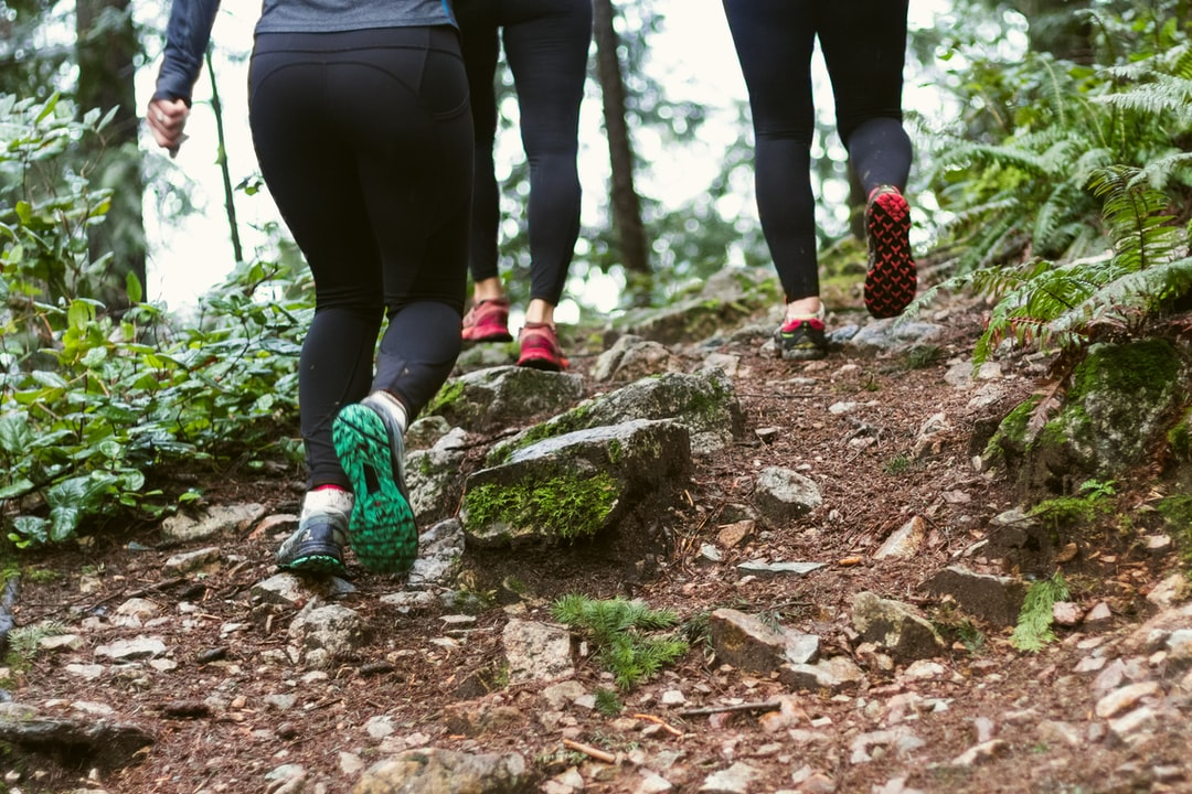 group of athletic women in running shoes climbing a trail in the forest