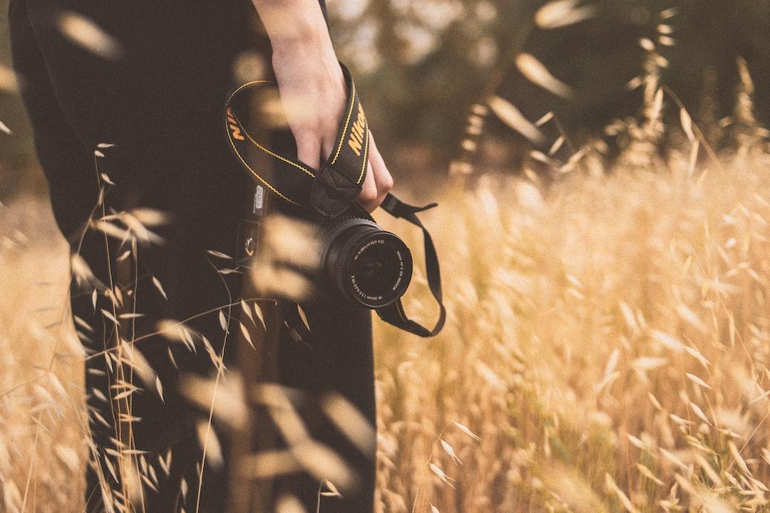 Nikon, Camera, Hand, Sunset - unsplash