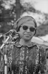 stand to sit rosa parks stories
