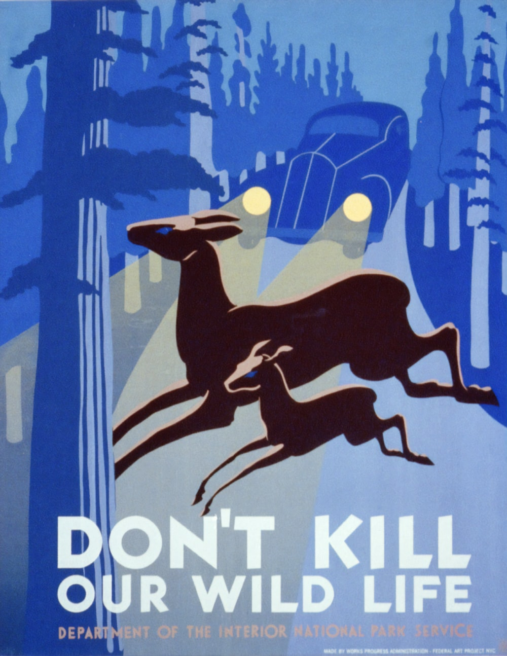 Don't Kill Our Wild Life. WPA poster.