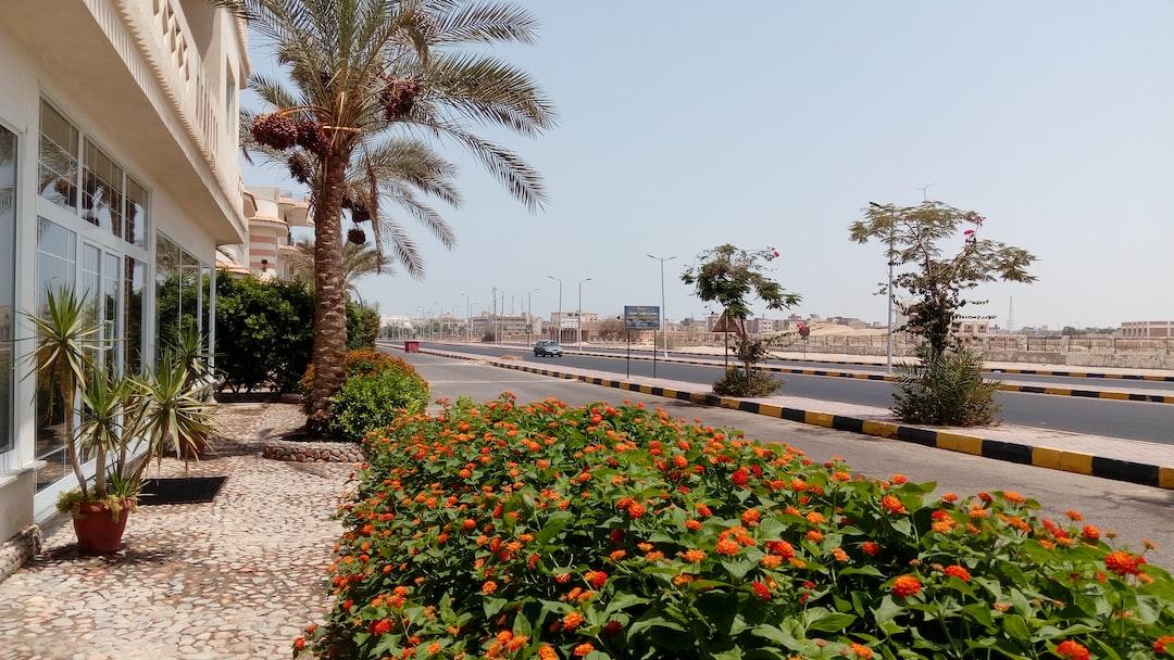 Hurghada street, Dahar area