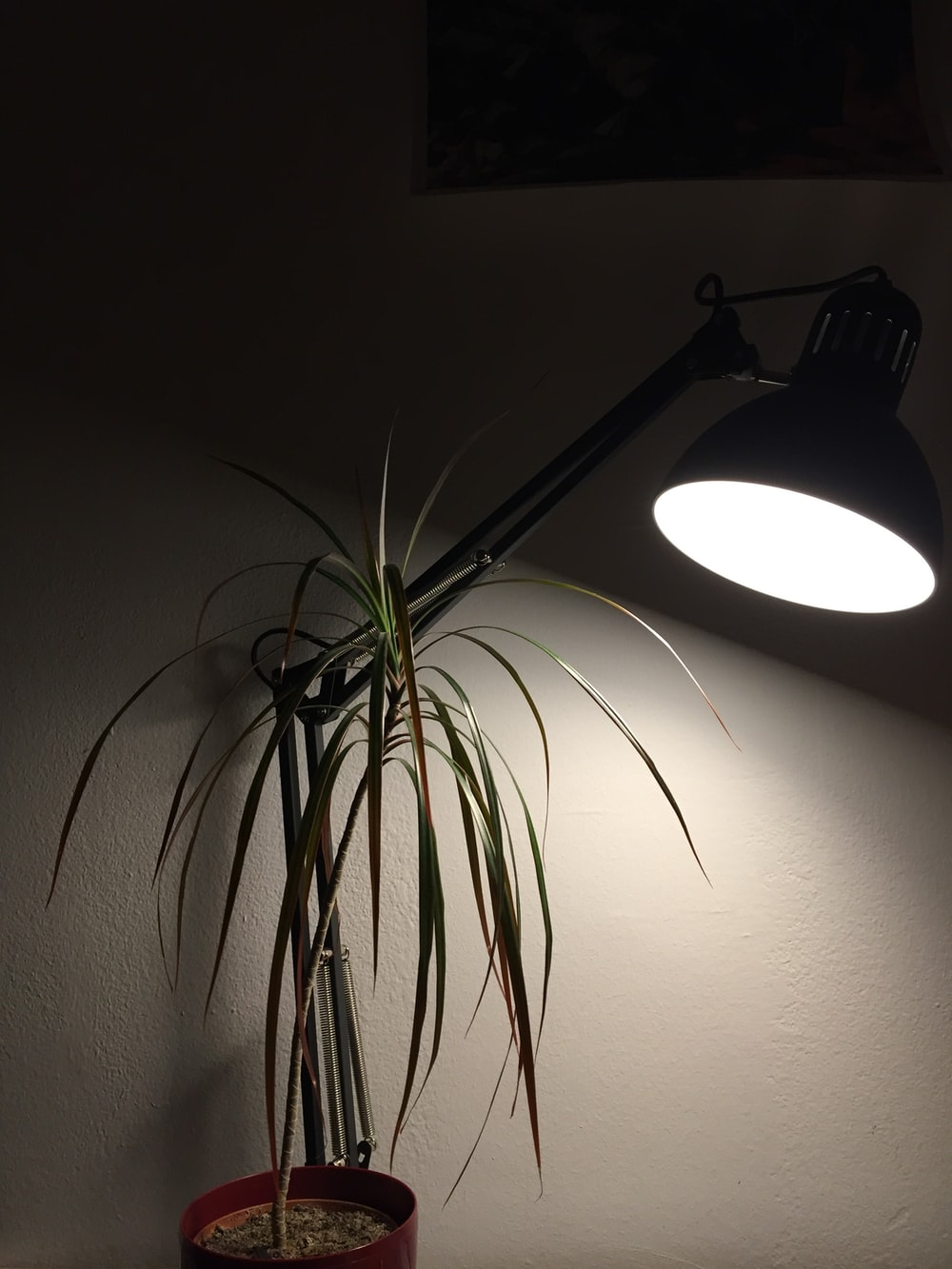 black and white floor lamp
