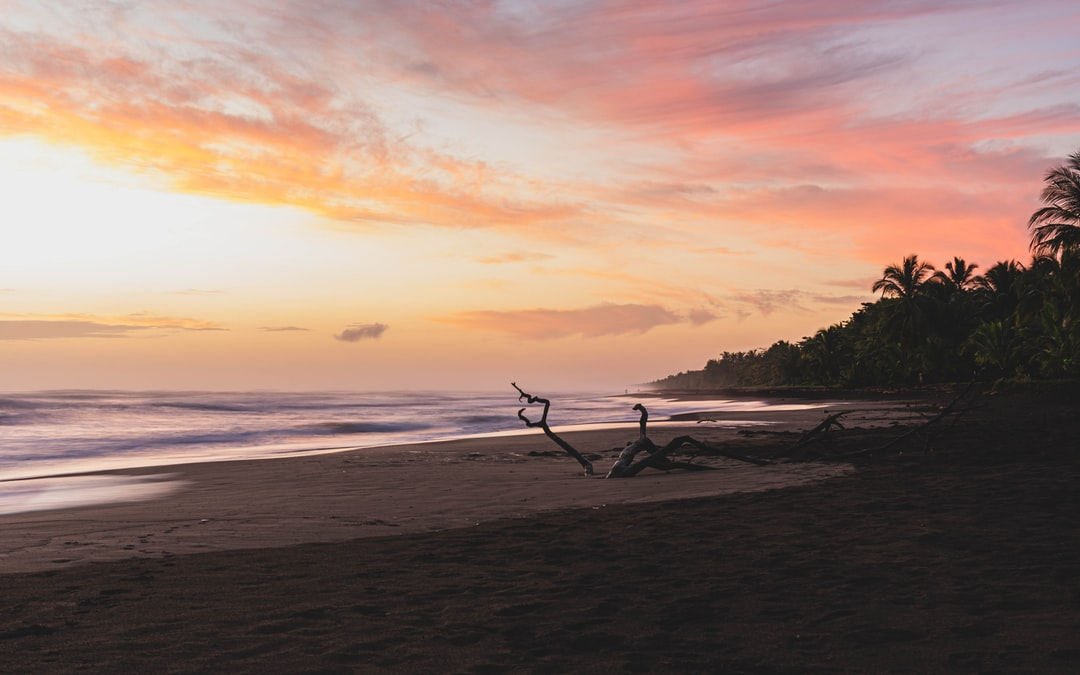 Sunrise At Tortuguero Beach, Costa Rica - unsplash
